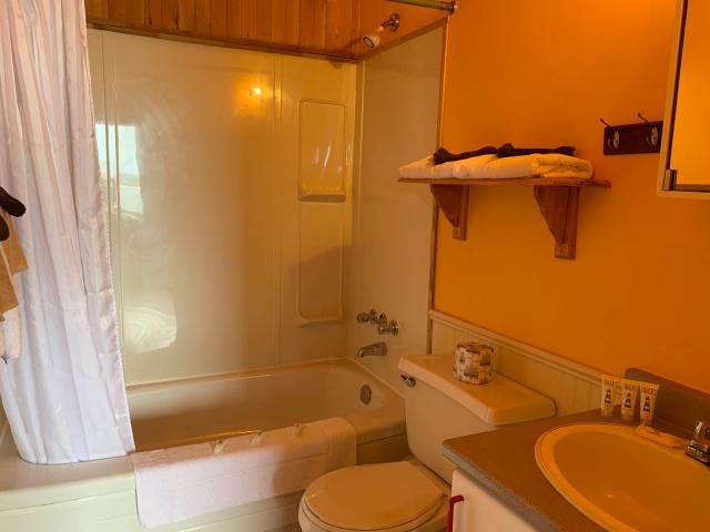 Cottage 9 bathroom